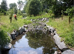 Image of Gwynns Falls project after restoration