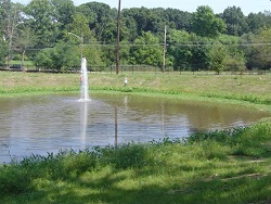 Image of completed Renaissance Stormwater Pond.